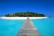La : Tropical islands / Beach
