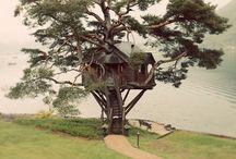 Ho : Houses 4 Treehouses