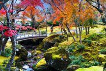 Ho : Gardens 2 / Japanese Gardens