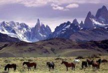 Ci : Patagonia