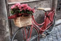 "Bike... my love ((""-_-""))"