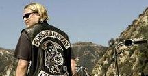 Harley Davidson  / harley fucking davidson