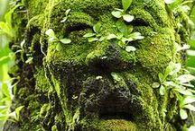 landscape art / man made and natural  landscape art
