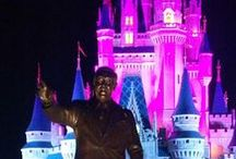 Disney World trip planning / Some great pins to plan your trip to Disney World Parks in Orlando Florida