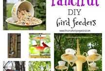 Bird feeders, bird houses & bird baths / Great ideas for fanciful, fun DIY bird feeders, baths, & houses