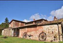 Agriturismo Sant'Andrea - Giardino / Immagini del giardino dell'Agriturismo Sant'Andrea - Il Tinaio a Sant'Andrea in Caprile a Capannori