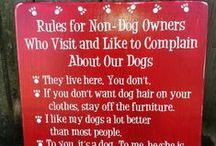 Dog care*
