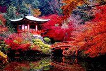Japan & Zen