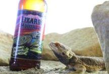 FigMtnBrew Beer / Thirsty yet?