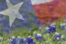 Lone Star + Americana / Home sweet home love and inspiration / by Tish DeHoyos