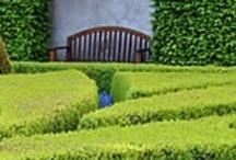 Wonen & tuinieren
