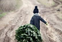 navidad, dulce navidad - merry christmas
