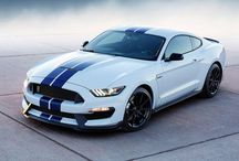 Mustang color