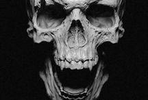 Skull's / Skull's