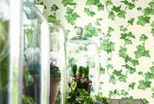 Papeles pintados con hojas - leaf wallpaper / Papeles con hiedras y hojas de todos los colores.
