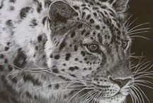 Wild Art / Photography, drawing, painting, and so much more - celebrating art that celebrates wildlife