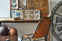 Cabinet de curiosités / Dénichez ici votre décoration et vos meubles pour construire votre propre cabinet de curiosités.