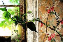 Glamorous Wallpaper