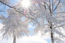 Beautés d'hiver / Les splendeurs de l'hiver, une saison glaciale qui se mérite et qui vaut le détour