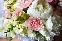 Celebrate : Wedding Inspiration / by Kristin Vargas-Nielsen