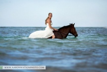 Trash The Dress / by Aaron Watson