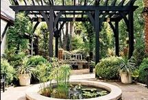Gardening Ideas / by Sabrina Pestel