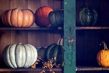 Celebrate : Fall & Harvest / by Kristin Vargas-Nielsen