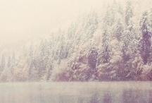 Woods..
