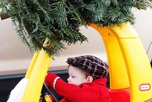 Christmas Trees / Christmas Information from the Holidays and Observances Website - http://www.holidays-and-observances.com/christmas.html