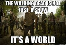 """~* The Walking Dead *~ / Clearly, the best show on TV since """"Lost""""! Been hooked since Day 1.  / by Steffy╰❤╮"""