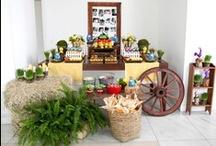 Festa Galinha Pintadinha (Fazenda)