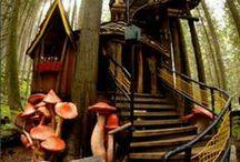 Treehouses Treasures
