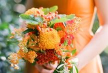 Orange Weddings / Orage Theme Weddings Inspirations