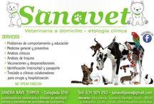 Sanavet / Servicio veterinario a domicilio para perros, gatos y animales exóticos en Jávea y alrededores. Etología clínica (medicina del comportamiento).