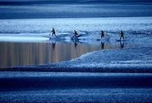 """Surf Photography by Streeter Lecka / During the July 2014 super moon, Getty Images Sports photographer Streeter Lecka traveled to Alaska to capture the rarely-seen surfers riding the famed """"bore tide"""" in the lower arm of the Cook inlet."""