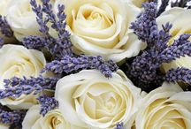 Petals / Pretty Flowers for Weddings, Birthdays and Any Days! Just to make us Smile! #TheBeautyAddict