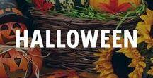 Halloween Dekoration / Halloween - das gruseligste Fest des Jahres. Wenn du deine Familie, deine Nachbarn und deine Partygäste so richtig erschrecken willst, findest du hier alle Tipps & Tricks die du brauchst. Blutiges Essen, Spinnennester an der Decke oder Nachtisch für Vampire.