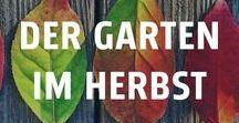 Der Garten im Herbst / Auch die goldene Jahreszeit wartet mit Gartenarbeit. Die Bäume färben sich in Rot und Gold, die Tage werden langsam kürzer: Der Herbst ist da und es ist Zeit für die Vorbereitungen auf den ersten Frost. Laub fegen, die Regenrinne reinigen, empfindliche Pflanzen vor der Kälte schützen und vieles mehr.  Auch Vogelhäuschen oder Futterstellen für Vögel oder Eichhörnchen kommen wieder zum Einsatz.