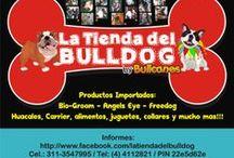 ACCESORIOS PARA PERROS y GATOS / Todo para tu mascota lo encuentras en LA TIENDA DEL BULLDOG https://www.facebook.com/latiendadelbulldog Juguetes, alimentos, ropa, accesorios, productos de aseo y limpieza, distribuidores en Colombia de Bio-Groom