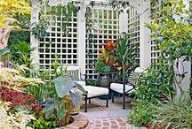 Garden / by Erika Del Rosario