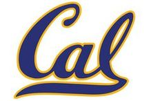 Cal Golden Bears / NCAA collegiate sports and UC Berkeley memorabilia, collectibles and sports merchandise for the ultimate sports fan of the California Golden Bears offered by Team Sports.