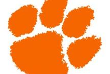 Clemson Tigers / NCAA collegiate sports and Clemson University memorabilia, collectibles and sports merchandise for the ultimate sports fan of the Clemson Tigers offered by Team Sports.
