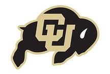 Colorado Buffaloes / NCAA collegiate sports and University of Colorado memorabilia, collectibles and sports merchandise for the ultimate sports fan of the Colorado Buffaloes offered by Team Sports.