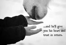 Horse Quotes / Quotes and sayings to inspire us all.