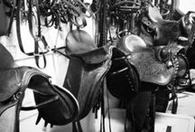 Horse Tack and Organization / Equine tack, and how to keep your supplies organized!