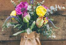 flowers. plants.