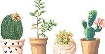 Kaktusliebe Illustration ♥ dhal / Wir lieben Kakteen, wie du vielleicht schon gemerkt hast. Und wir lieben ebenfalls tolle Illustrationen. Nun kombinieren wir in dieser Pinwand beide Leidenschaften uns sammeln alles rund um Kaktus Illustrationen.