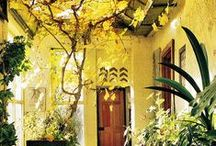 HÔME / Beautiful inside and outside designs and decorations