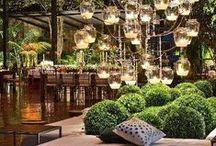 Outdoor / #esterni #giardini #patio #green #fiori #piante