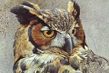 Art - Animals & Wildlife